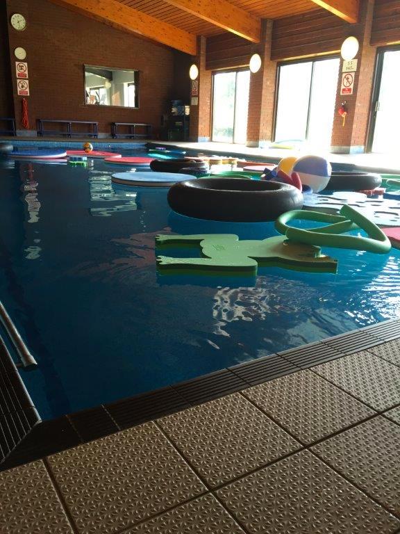 jaguar swimming pool - photo #17